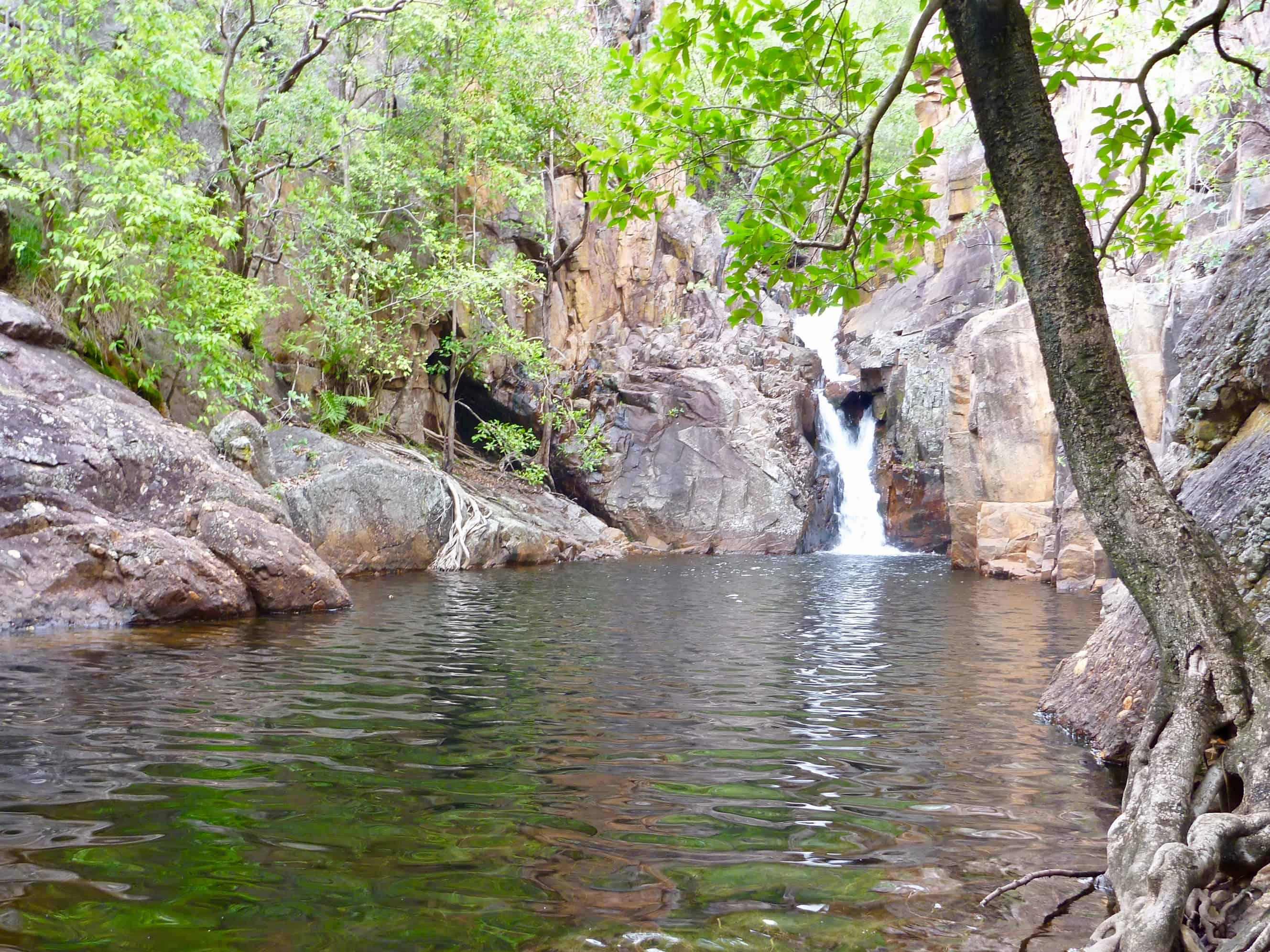 Ikoymarrwa - Moline Rockhole - Kakadu private tour - Sugarbag Safaris